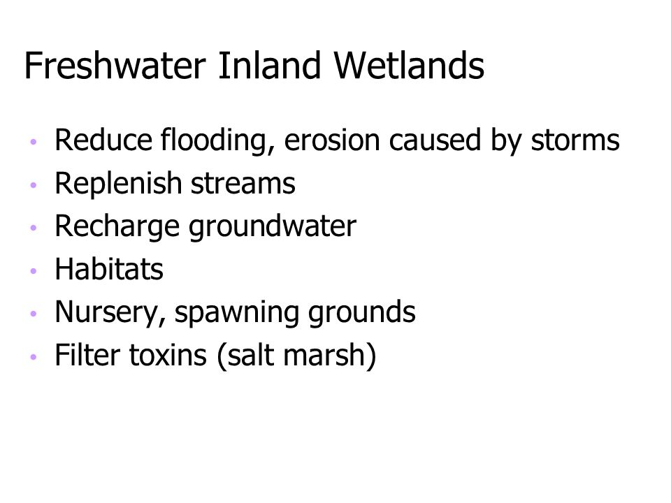 Freshwater Inland Wetlands