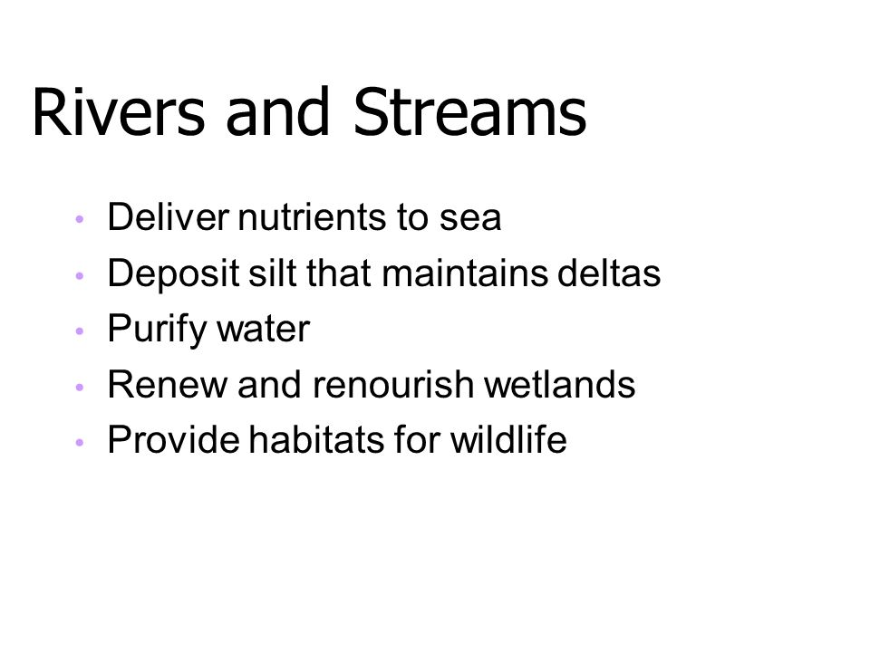 Rivers and Streams Deliver nutrients to sea