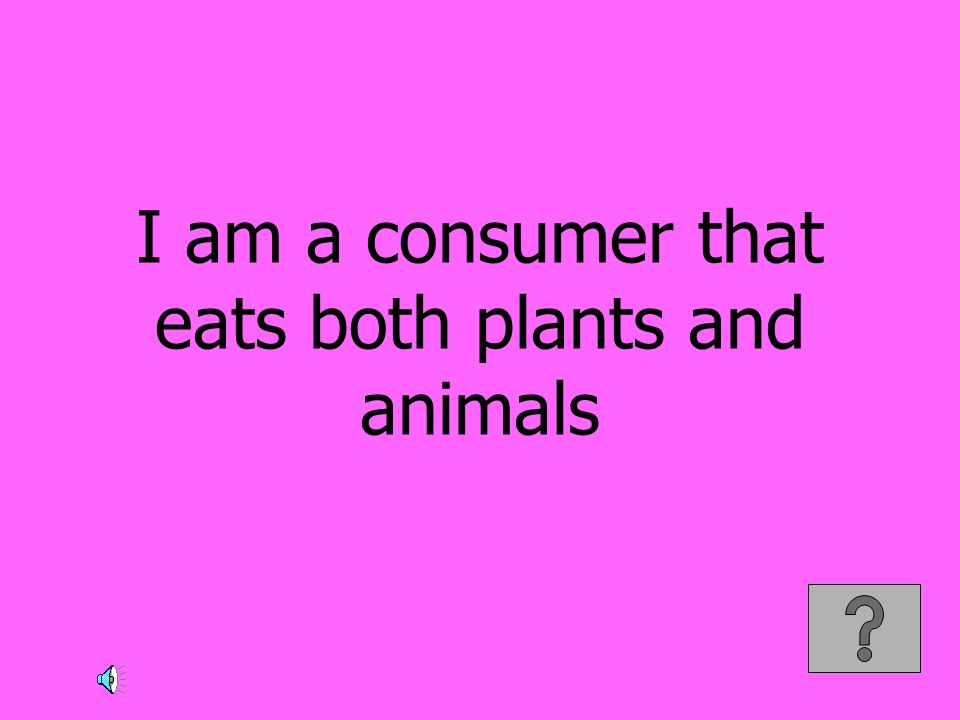 I am a consumer that eats both plants and animals