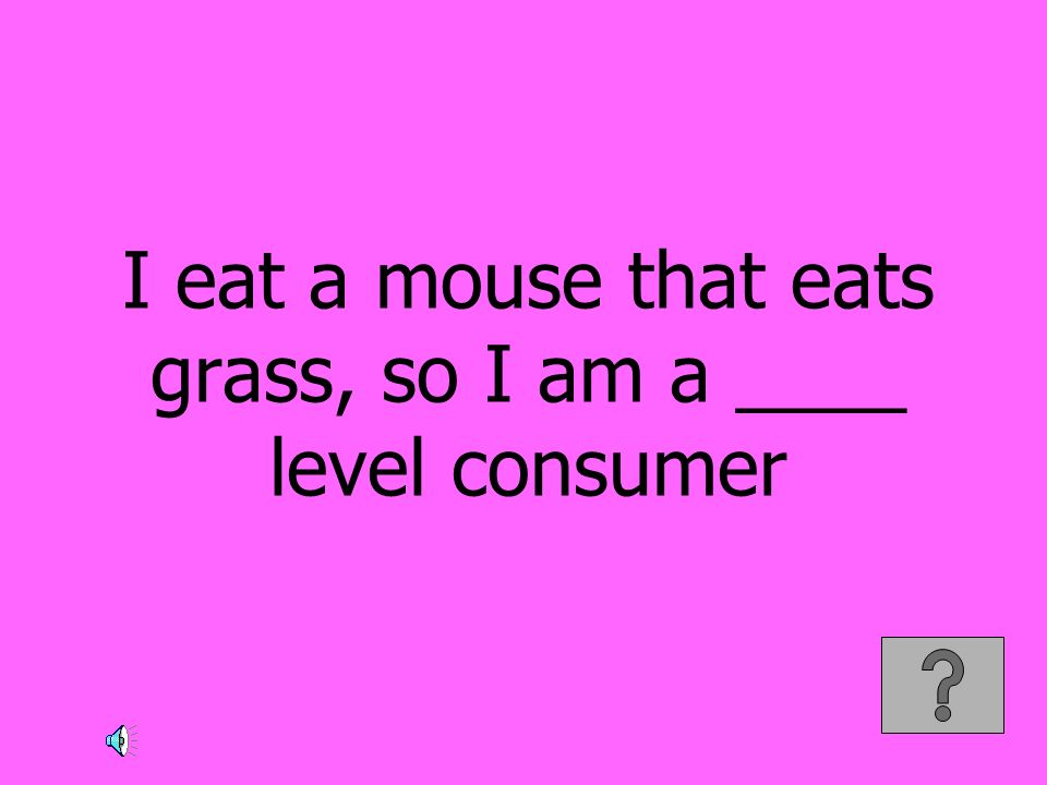 I eat a mouse that eats grass, so I am a ____ level consumer
