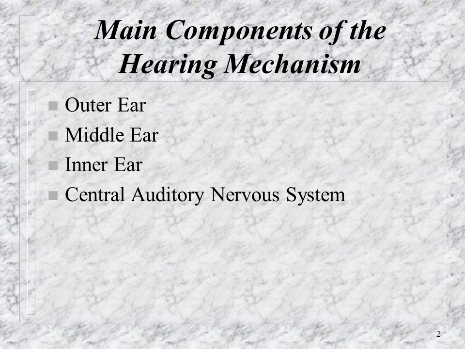 Main Components of the Hearing Mechanism