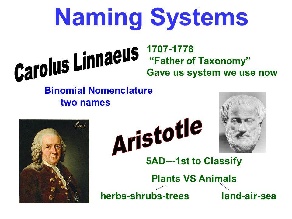 Naming Systems Aristotle Carolus Linnaeus 1707-1778