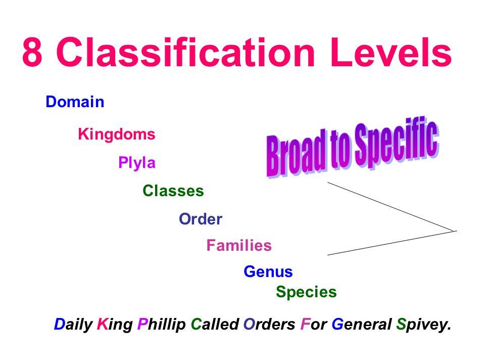 8 Classification Levels