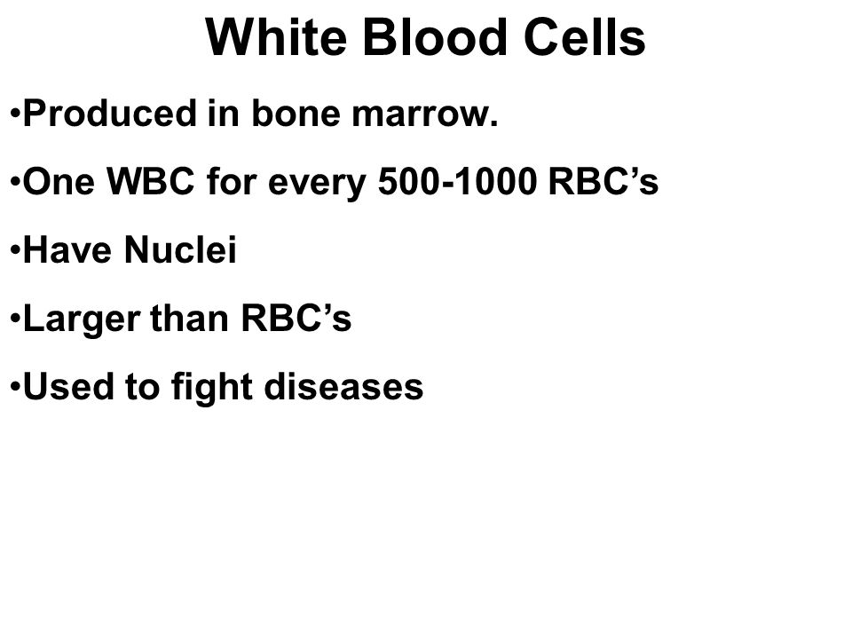 White Blood Cells Produced in bone marrow.