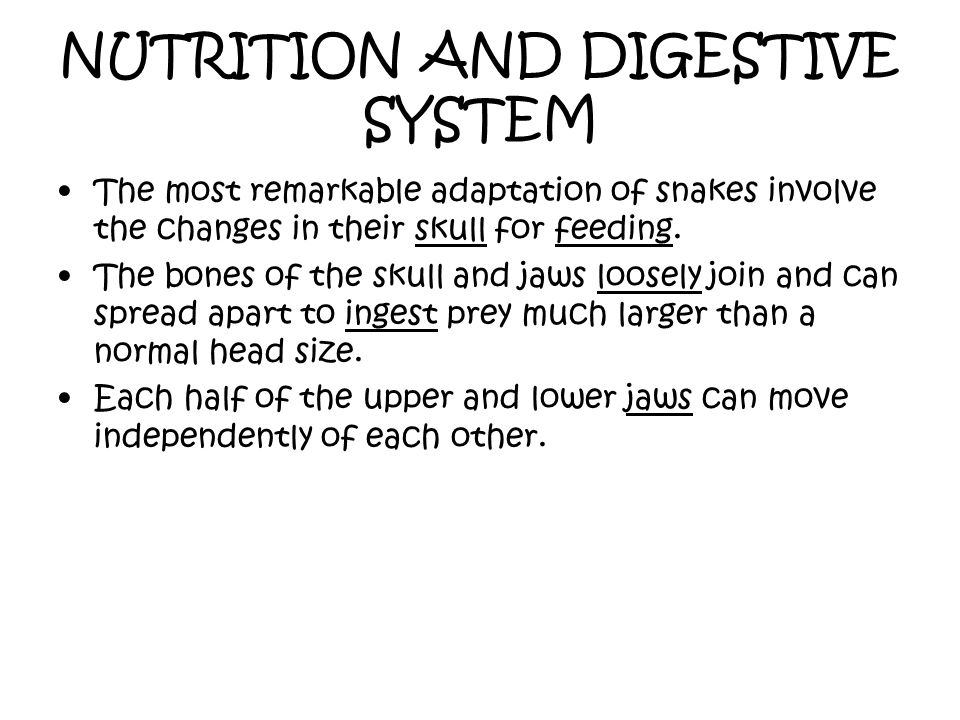 NUTRITION AND DIGESTIVE SYSTEM
