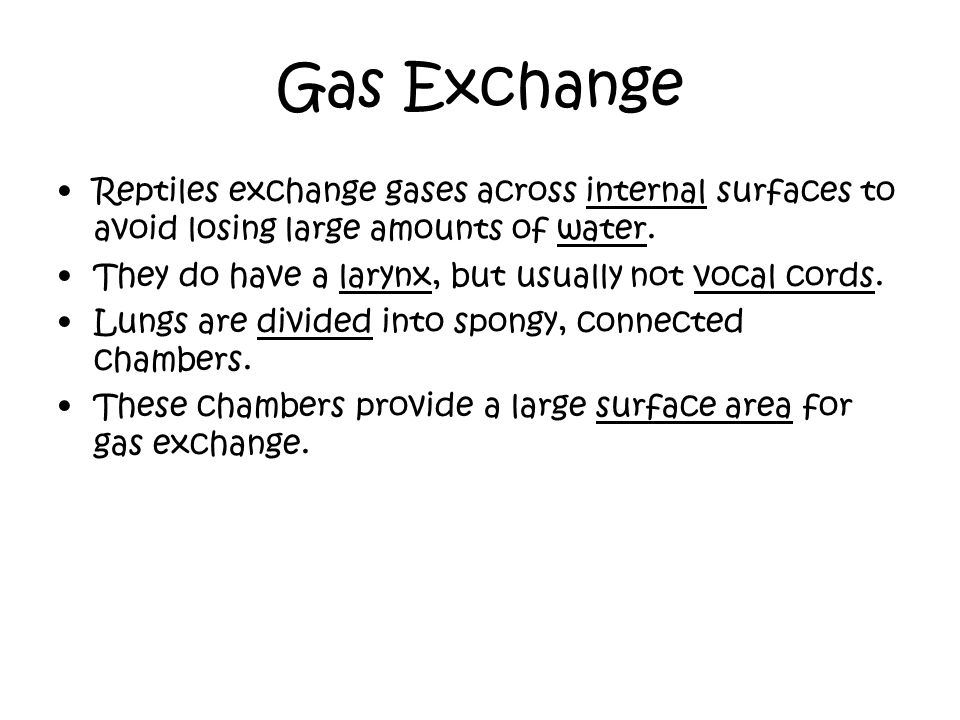 Gas Exchange Reptiles exchange gases across internal surfaces to avoid losing large amounts of water.