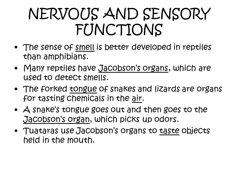 NERVOUS AND SENSORY FUNCTIONS