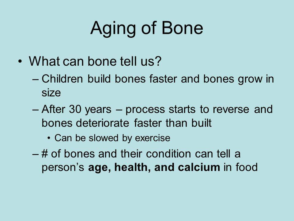 Aging of Bone What can bone tell us