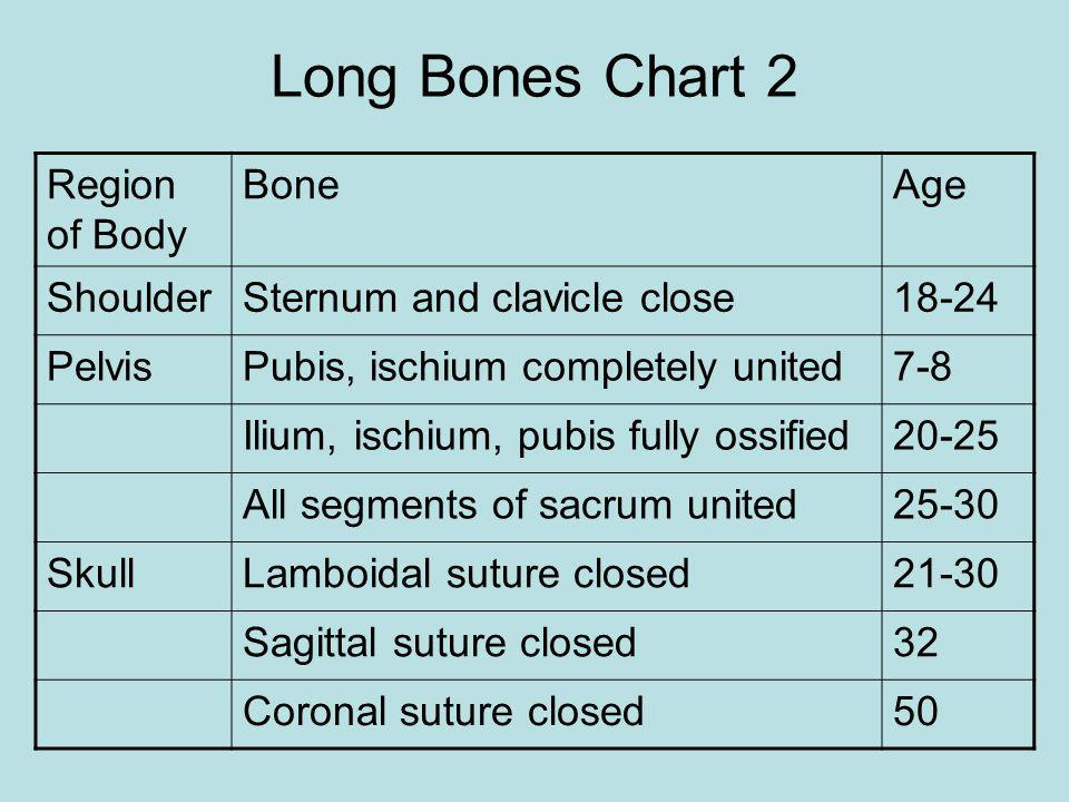 Long Bones Chart 2 Region of Body Bone Age Shoulder