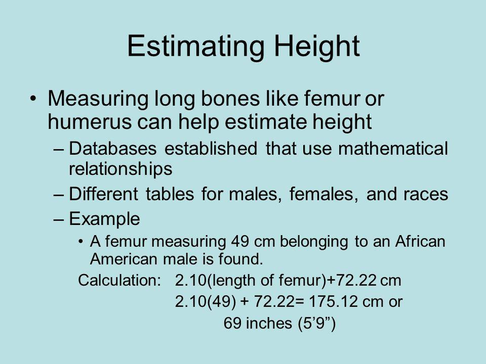 Estimating Height Measuring long bones like femur or humerus can help estimate height. Databases established that use mathematical relationships.