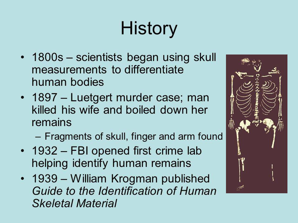 History 1800s – scientists began using skull measurements to differentiate human bodies.