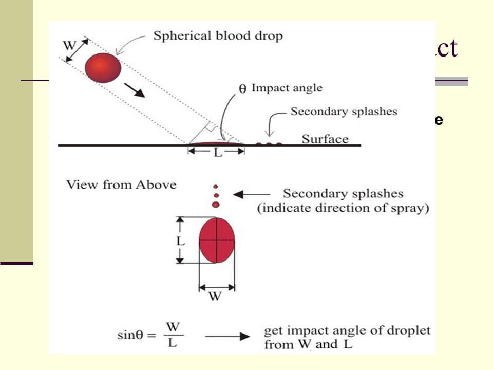 Blood Spatter and Angle of Impact