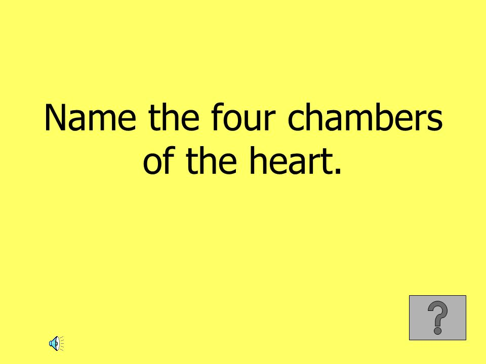 Name the four chambers of the heart.