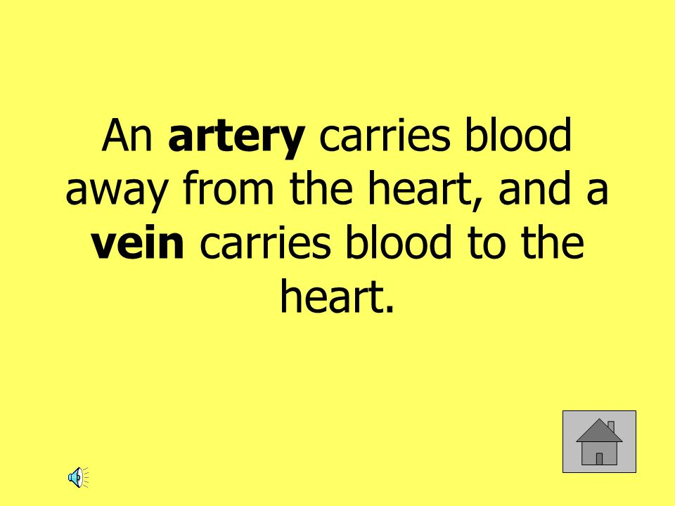 An artery carries blood away from the heart, and a vein carries blood to the heart.