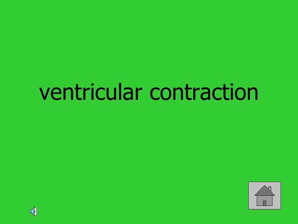 ventricular contraction