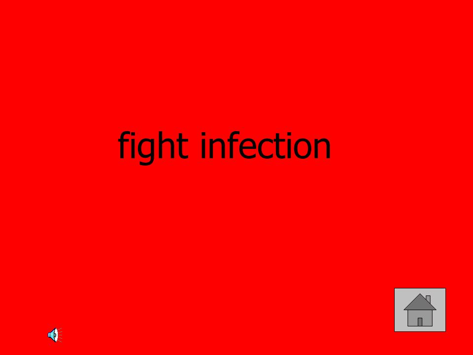 fight infection
