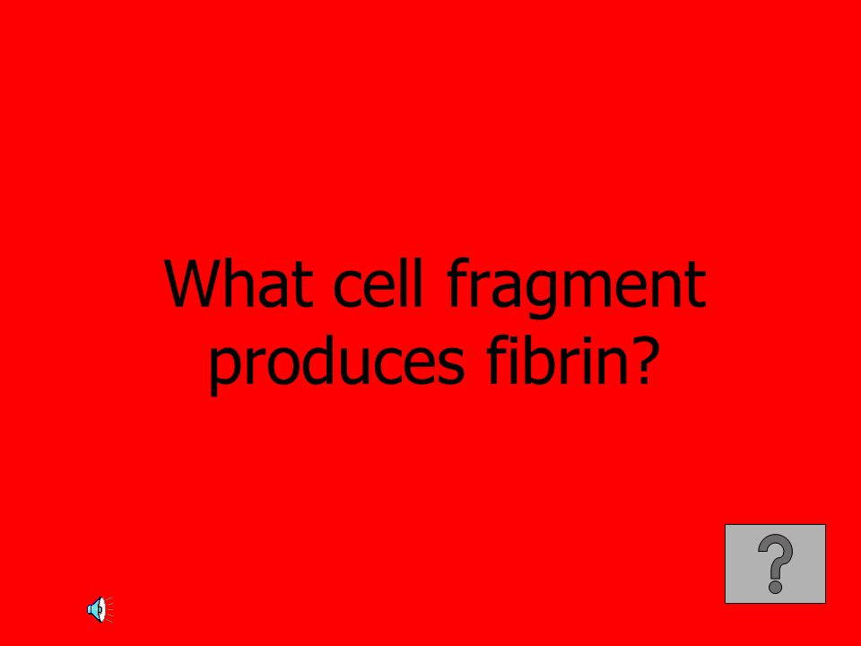 What cell fragment produces fibrin
