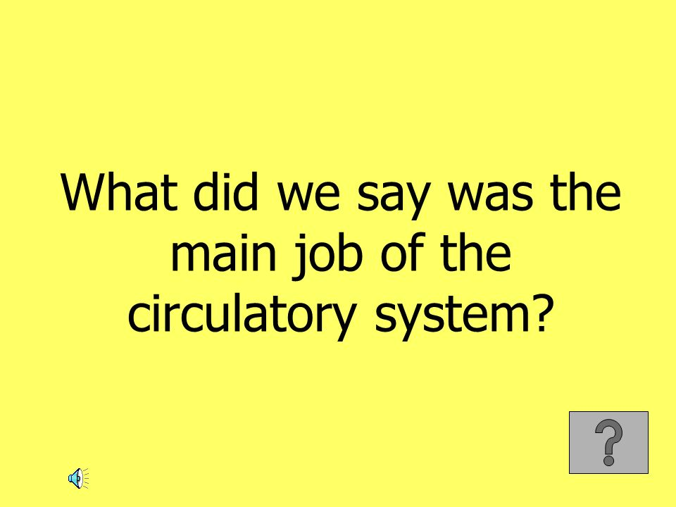 What did we say was the main job of the circulatory system