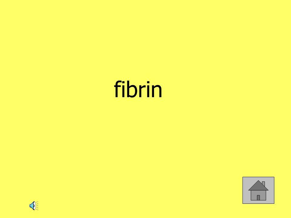 fibrin