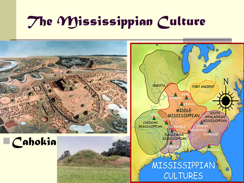 The Mississippian Culture