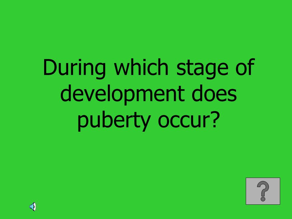 During which stage of development does puberty occur