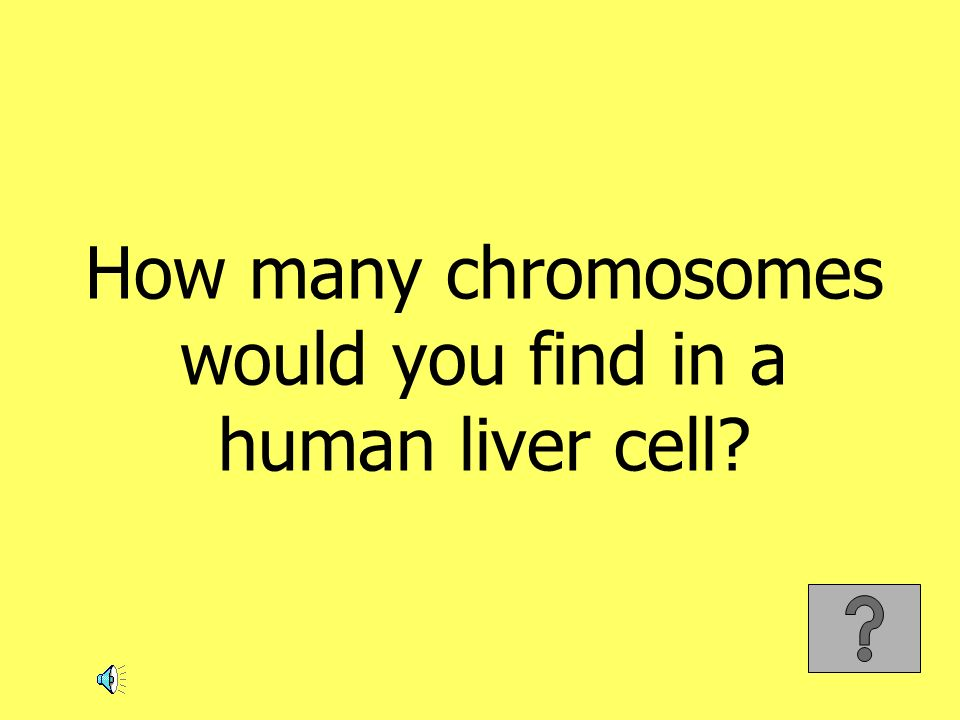 How many chromosomes would you find in a human liver cell