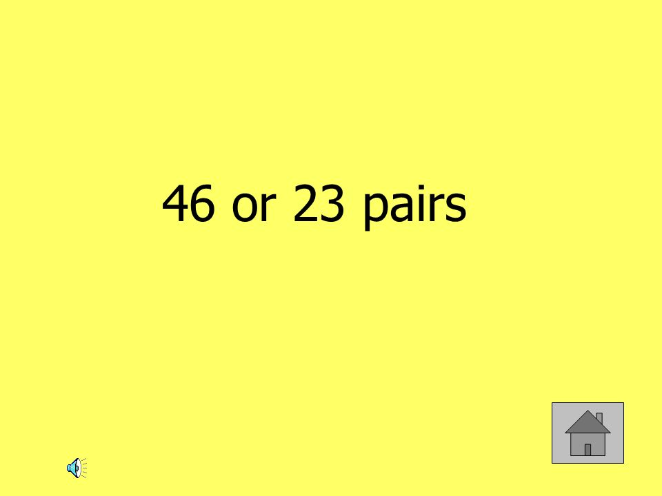 46 or 23 pairs