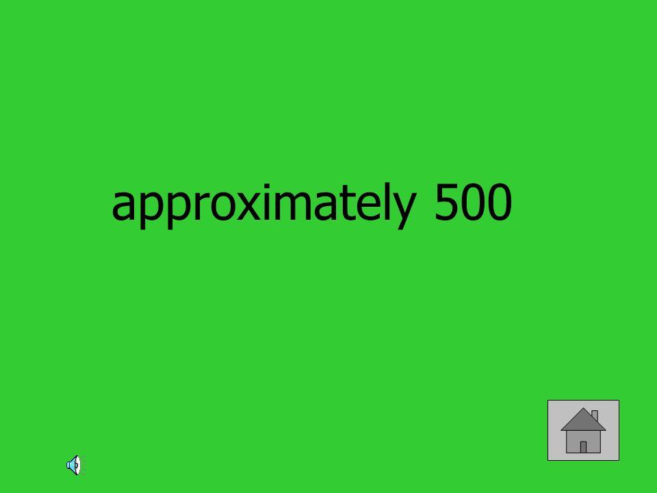approximately 500