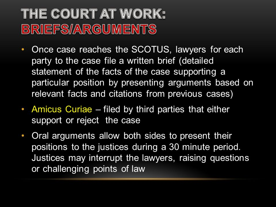 THE COURT AT WORK: BRIEFS/ARGUMENTS