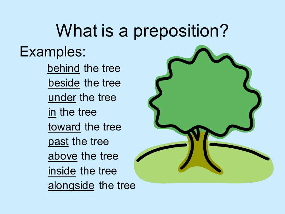 What is a preposition Examples: behind the tree beside the tree