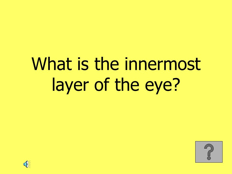 What is the innermost layer of the eye