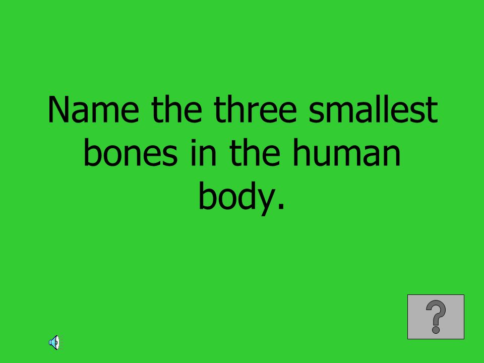 Name the three smallest bones in the human body.