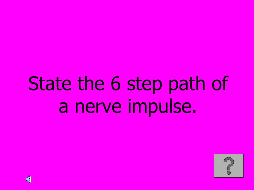 State the 6 step path of a nerve impulse.