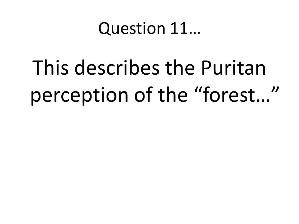 This describes the Puritan perception of the forest…
