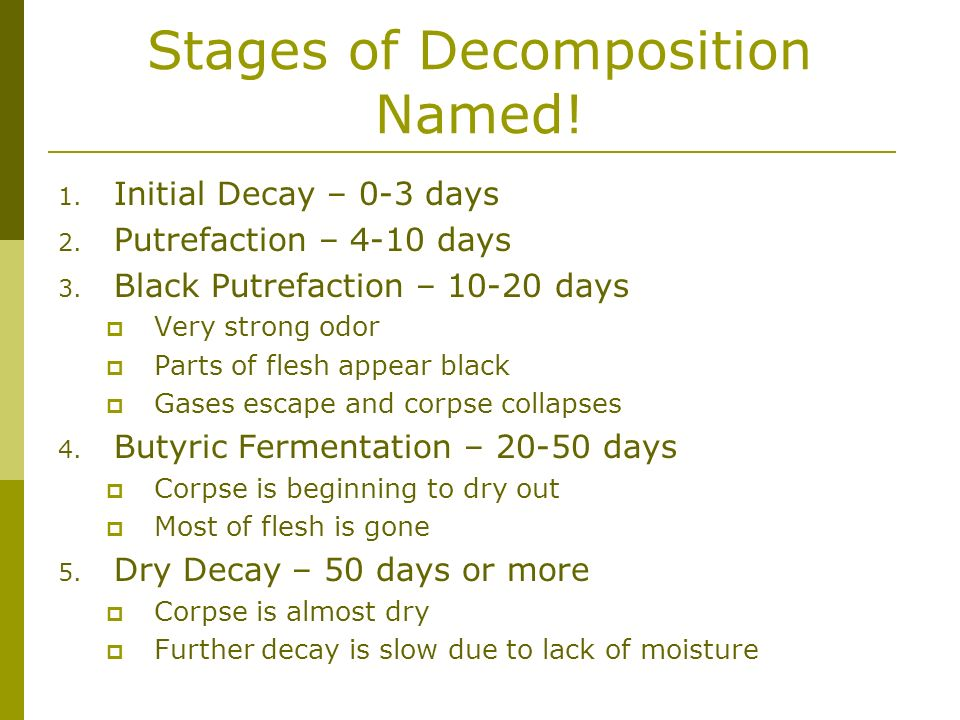 Stages of Decomposition Named!
