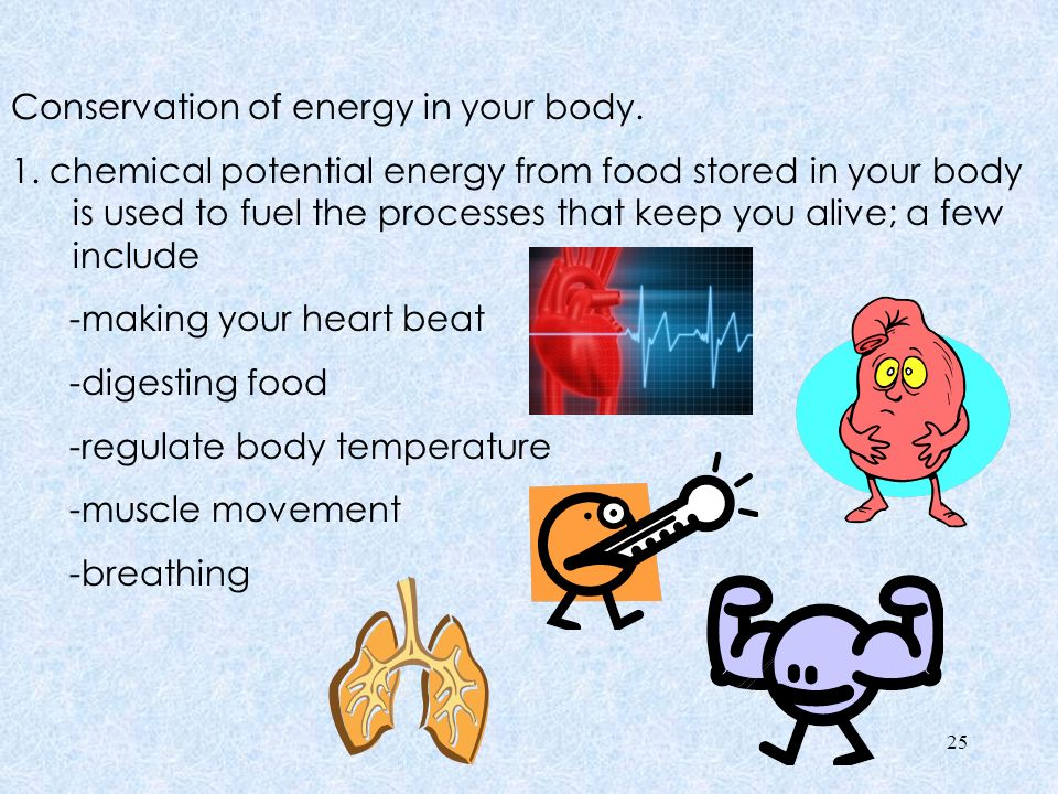 Conservation of energy in your body. 1
