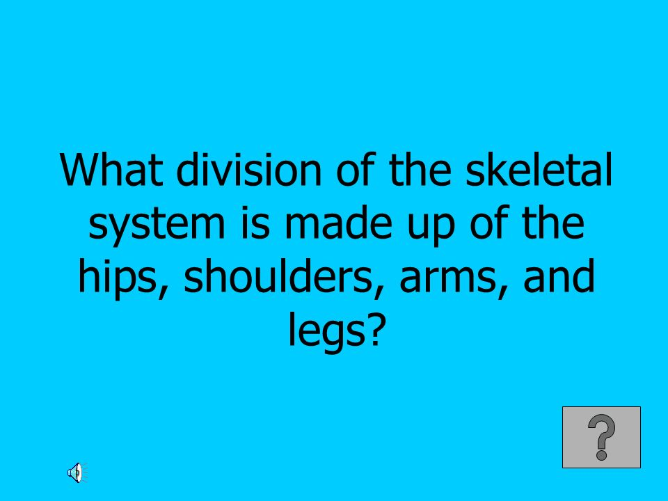 What division of the skeletal system is made up of the hips, shoulders, arms, and legs