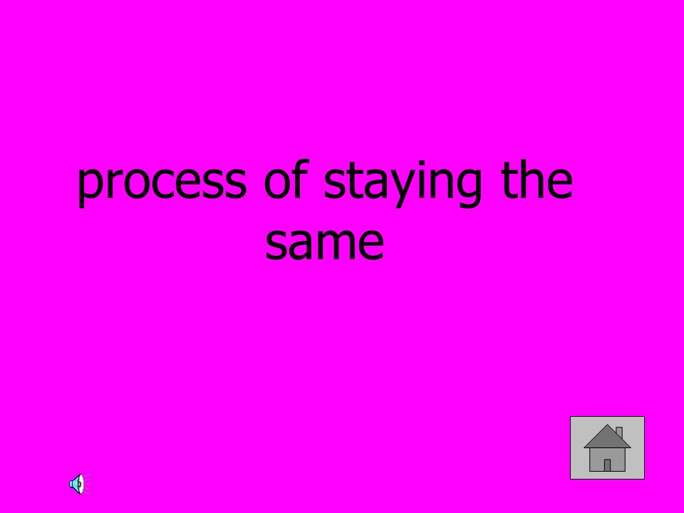 process of staying the same