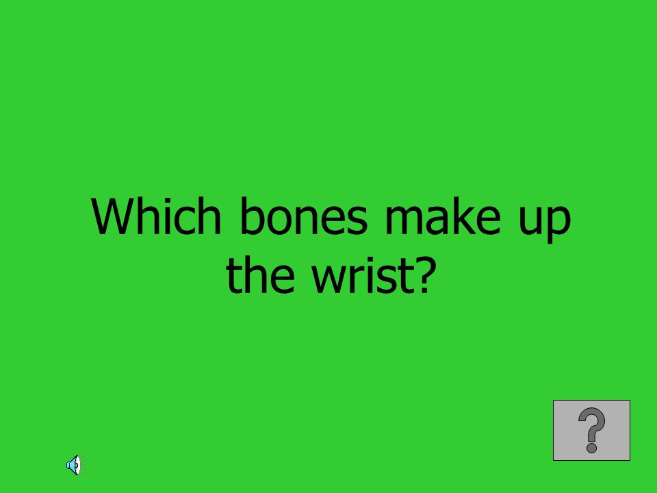 Which bones make up the wrist