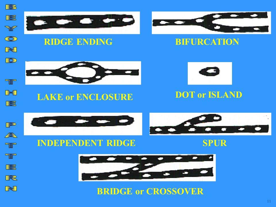 BEYOND THE PATTERN RIDGE ENDING BIFURCATION DOT or ISLAND
