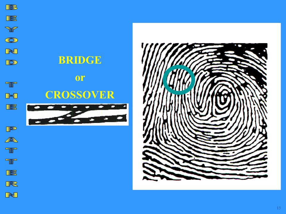 BRIDGE or CROSSOVER BEYOND THE PATTERN 15