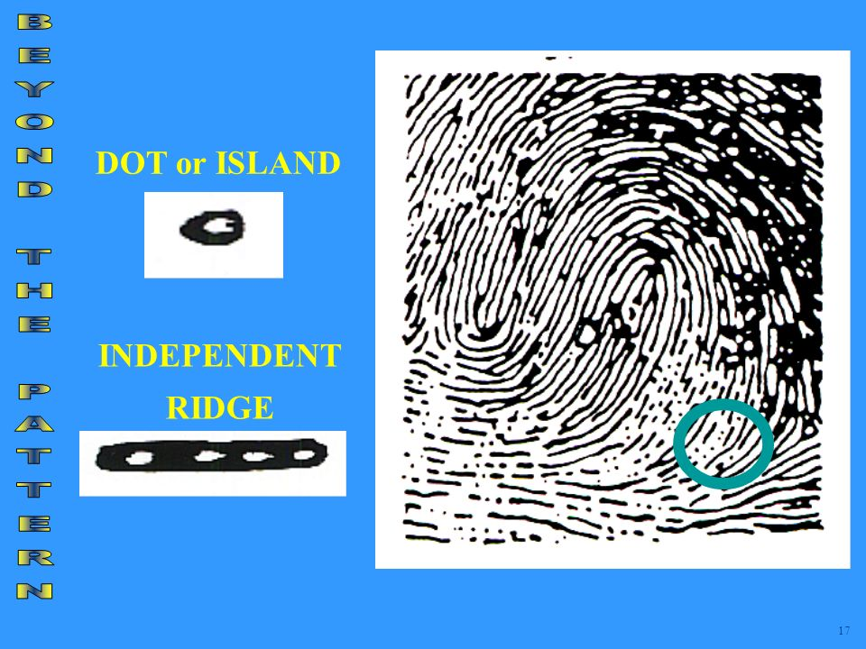 DOT or ISLAND BEYOND THE PATTERN INDEPENDENT RIDGE 17