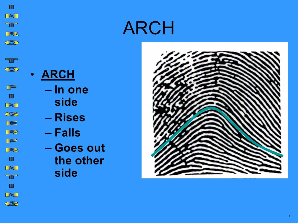INTRO TO FINGERPRINTING