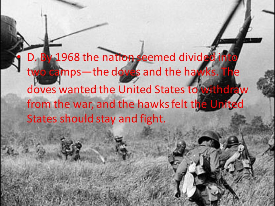 D. By 1968 the nation seemed divided into two camps—the doves and the hawks. The