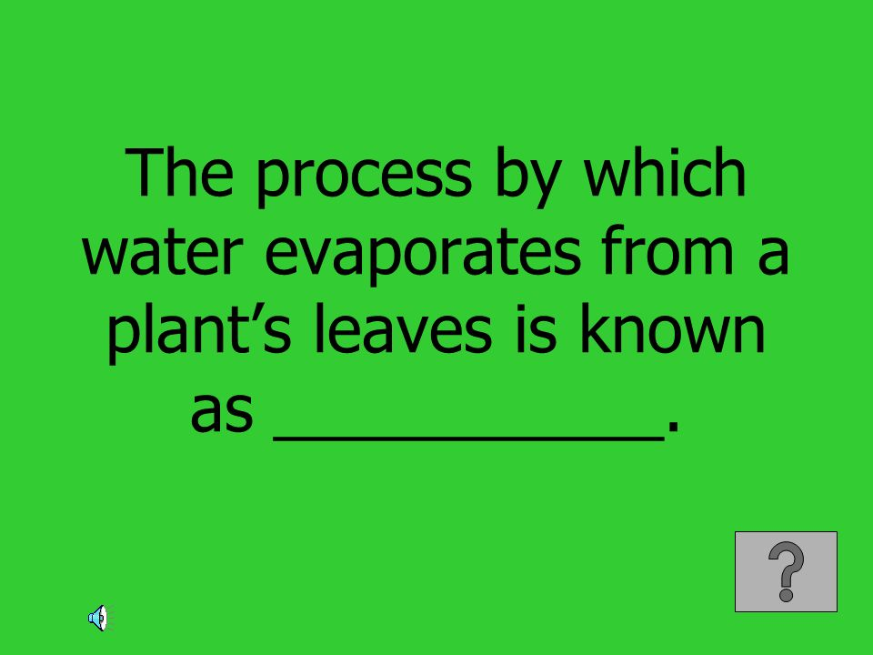 The process by which water evaporates from a plant's leaves is known as ___________.