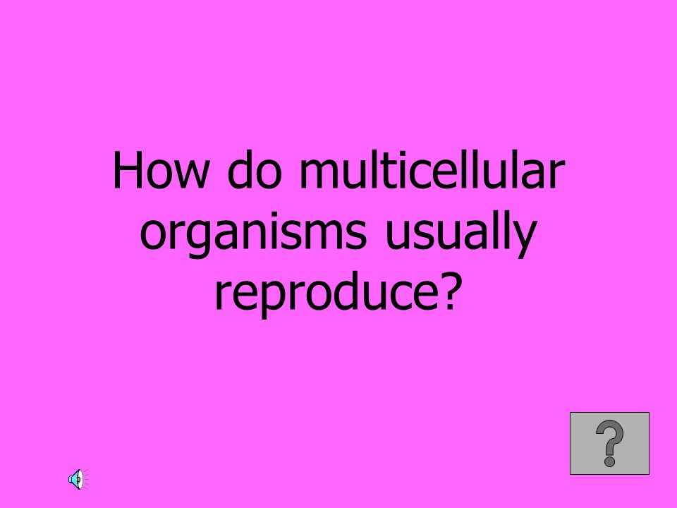 How do multicellular organisms usually reproduce