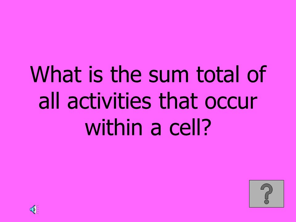 What is the sum total of all activities that occur within a cell