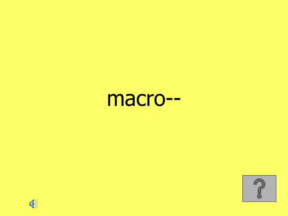 macro--