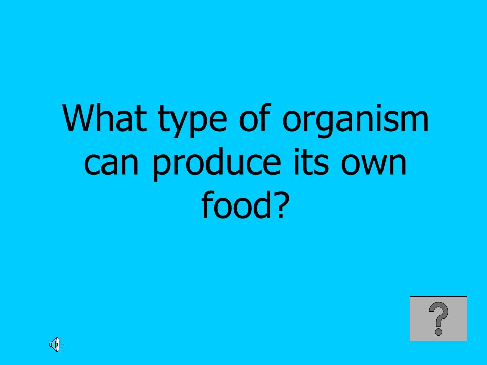 What type of organism can produce its own food