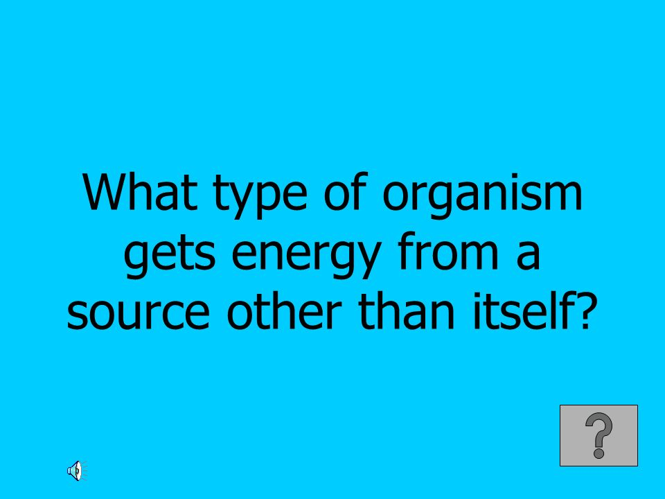 What type of organism gets energy from a source other than itself